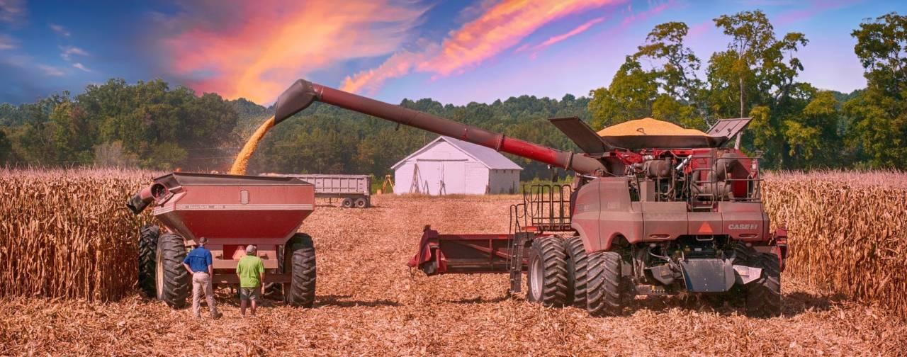 farming-2570803_1920-1280x504.jpg